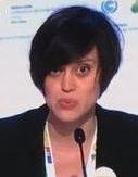 Femke de Jong, EU policy director at Carbon Market Watch