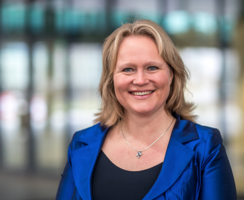 Kitty Nijmeijer, hoogleraar Membraantechnologie, onderzoek blauwe energie