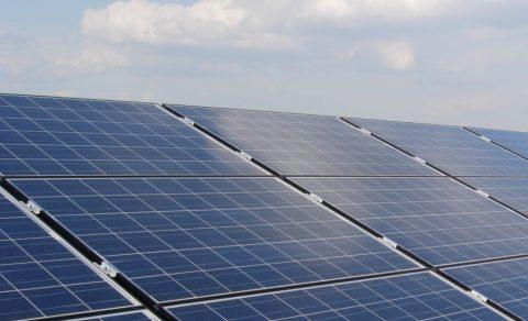 zonnepanelen voor elektriciteitsproductie (foto: Koen Mortelmans)