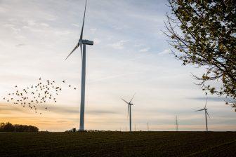 foto: EDF Luminus