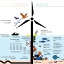 Beeld: Stichting De Noordzee