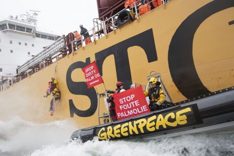 Foto: Marten van Dijl / Greenpeace